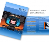 Steorn - 6 Panel Brochure